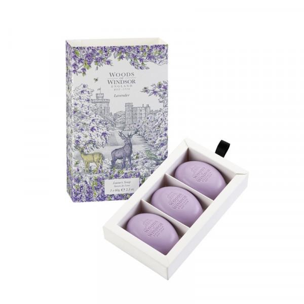 Woods of Windsor Gästeseifen Lavendel 3 x 60g