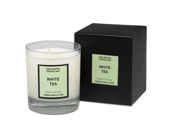 Cereria Mollá 1899 Duftkerze White Tea im Glas